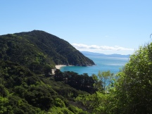 The glorious golden bays of Abel Tasman