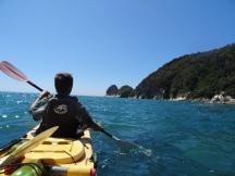 Kayaking with seals